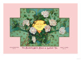 White Rose Soap Prints