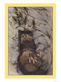 Common Wasps Posters by Edward Detmold