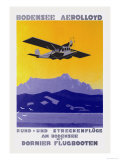 Bodensee Aerolloyd Flying Boat Tours Prints by Marcel Dornier
