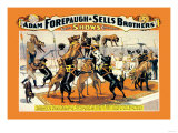 Troupe of Champion Great Danes: Adam Forepaugh and Sells Brothers Prints