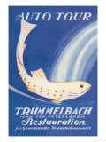 Auto Tour Trummelbach Posters by Anton Trieb