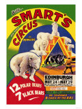 Billy Smart's New World Circus and Menagerie: 12 Polar Bears, 7 Black Bears Lámina