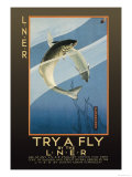 Try a Fly Art by V.l. Danvers