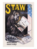 Professor Staw and His Wonderful Educated Monkeys Photo