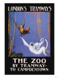 The Zoo Monkeys Posters