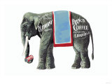 Elephant Brand French Coffee Prints