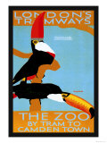 The London Zoo: South American Toucans Posters by Tony Castle
