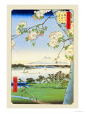 Cherry Blossoms Art by Ando Hiroshige