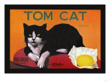 Tom Cat Brand Posters