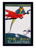 The London Zoo: The Macaw Prints by Van Jones