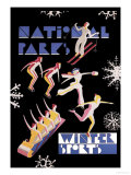 National Park&#39;s Winter Sports Prints by Dorothy Waugh