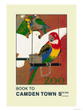 The London Zoo: Exotic Birds Posters by S.t.c. Weeks