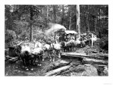 Loggers and Their Logs Premium Giclee Print by Clark Kinsey