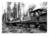 Logging Train Premium Giclee Print by Clark Kinsey