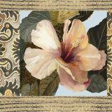 Hibiscus II Prints by  Di Grazzia
