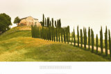 Tuscan Hills Prints by Jim Chamberlain
