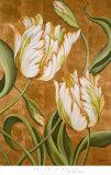 A Cappella II Prints by Brian O'neill