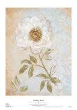 Wedding Rose I Kunstdrucke von Lisa Ven Vertloh