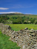Dry Stone Wall, Swaledale, North Yorkshire, England, UK, Europe Photographic Print by Jonathan Hodson