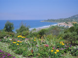 Laguna Beach, California, USA Photographic Print by Geoff Renner
