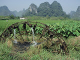 Traditional Bamboo Waterwheel, Guilin, China, Asia Photographic Print by Gina Corrigan