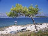 Deserted Island Beach, Lumbarda, Corcula (Korcula) Island, Southern Dalmatia, Croatia, Europe Photographic Print by Peter Higgins