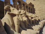 Temple of Karnak, Luxor, Egypt, North Africa Photographic Print by Robert Harding