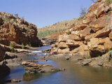Heron on Central Rocks, Bell Creek Gorge, Below Main Falls, Kimberley, Western Australia, Australia Photographic Print by Richard Ashworth