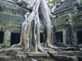 Ta Prohn, Angkor, Siem Reap, Cambodia, Indochina, Asia Photographic Print by Gina Corrigan