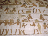 Depictions of Everday Life, Tomb of Renhuire, Thebes, Egypt Photographic Print by Richard Ashworth