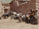 Village Scene with Tibetans and Their Animals, Lahuto, Tibet, China, Asia Photographic Print by Occidor Ltd