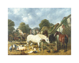 In The Paddock Premium Giclee Print by John Frederick Herring I