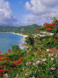 Grand Anse Beach, Grenada, Caribbean, West Indies Photographic Print by Robert Harding