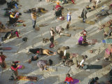 Buddhist Pilgrims Prostrating, Barkhor Jokhang Temple, Lhasa, Tibet, China Photographic Print by Gavin Hellier