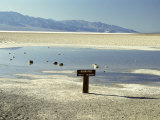 Badwater, Lowest Point in the U.S.A., Death Valley, California, United States of America (U.S.A.) Photographic Print by Gavin Hellier