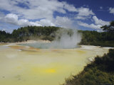 Geothermal Springs, Rotorua, South Auckland, North Island, New Zealand Photographic Print by Maurice Joseph