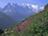 View of Mont Blanc from Grand Balcon, Chamonix, Savoie, French Alps, France, Europe Photographic Print by Lorraine Wilson