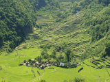 2000 Year Old Rice Terraces, Banga-An, Banaue, Luzon, Philippines Photographic Print by Maurice Joseph