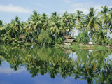 The Backwaters Near Kumarakom, Kerala State, India, Asia Photographic Print by Jenny Pate