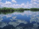 Okavango Delta, Botswana, Africa Photographic Print by Jenny Pate