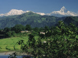 Mount Machapuchare (Machhapuchhare), Himalayas, Nepal, Asia Photographic Print by Sybil Sassoon