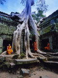 Monks in the Ta Prohm Temple, Angkor, Unesco World Heritage Site, Siem Reap, Cambodia, Asia Photographic Print by Gavin Hellier