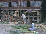 Village Scene, Toba Bataks, North Sumatra, Sumatra, Indonesia, Southeast Asia, Asia Photographic Print by Sybil Sassoon