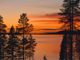 Laponia World Heritage Site, Lappland, Sweden, Scandinavia, Europe Fotoprint av Gavin Hellier