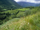 Valley of the River Berthe Near Accous, Bearn, Pyrenees, Aquitaine, France, Europe Photographic Print by David Hughes