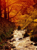 Fall Foliage and Running Stream, Grindsbrook Edale, Peak District, Derbyshire, England, UK Photographic Print by David Hughes