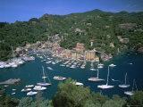 Portofino, Riviera Di Levante, Italian Riviera, Liguria, Italy, Europe Photographic Print by Gavin Hellier