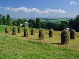 Typical Polish Landscape Near Zacopane, Tatra Mountains, Poland, Europe Photographic Print by Gavin Hellier