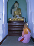Nun and Statue of the Buddha, Shwedagon Paya (Shwe Dagon Pagoda), Yangon (Rangoon), Myanmar (Burma) Photographic Print by Gavin Hellier