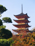 Five Storey Pagoda, Miyajima, Japan Photographic Print by Charles Bowman